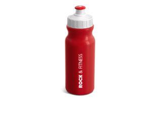 Carnival Water Bottle