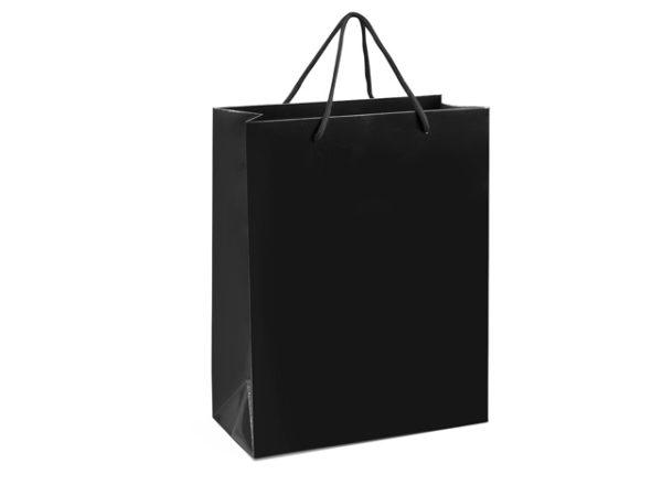 Dazzle Medium Gift Bag