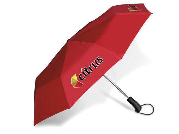Wimsical Compact Umbrella